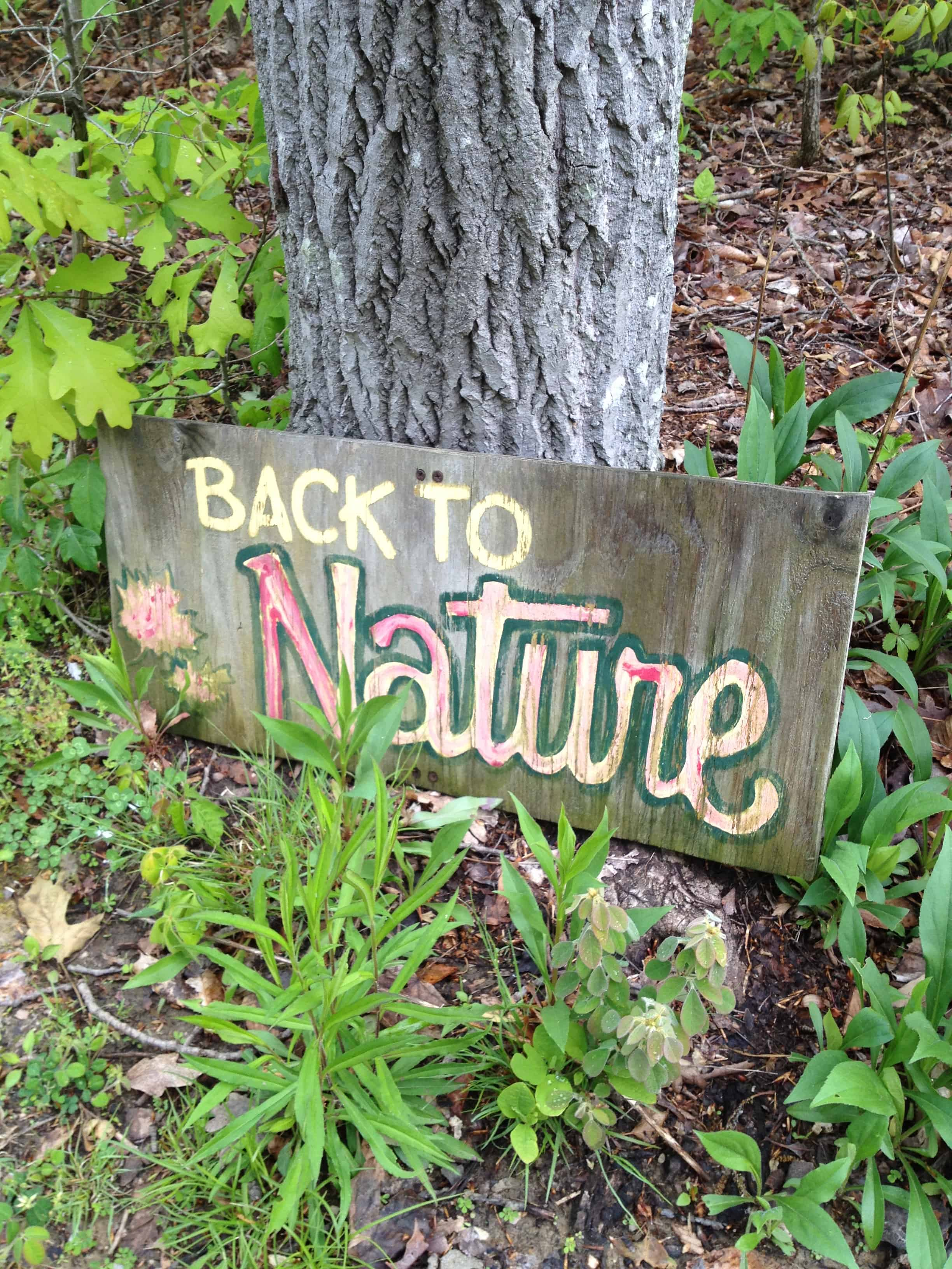 Back To Nature Sign